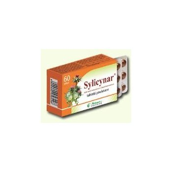 Sylicynar na wątrobę i cholesterol