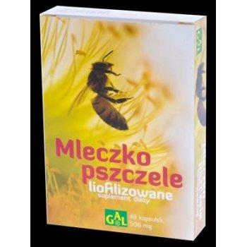 Mleczko Pszczele liofilizowane