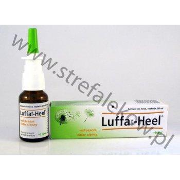 Luffa Heel przeciwalergiczne krople do nosa