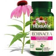 Herbaya Echinacea Prawidłowa Odporność