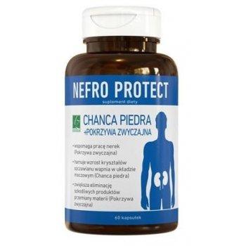 Nefro Protect wspiera funkcje układu moczowego