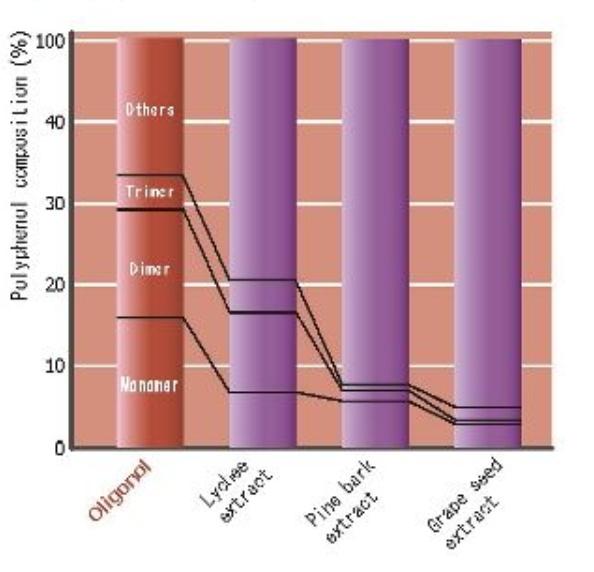 Zawartość monomerów porównanie