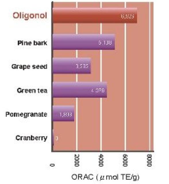 Potencjał utleniający Oligonol porównanie