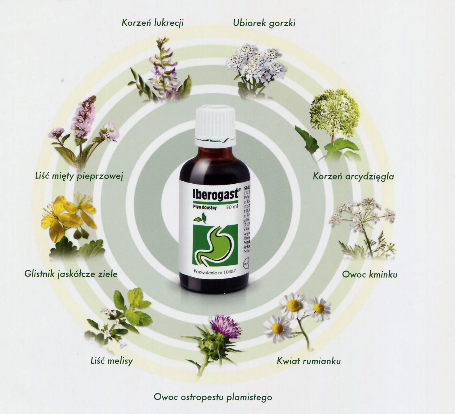 Iberogast zioła poprawiające trawienie